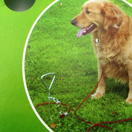 Hundepflock - Hundespirale - Anleinspirale - Anleinpflock für Hunde
